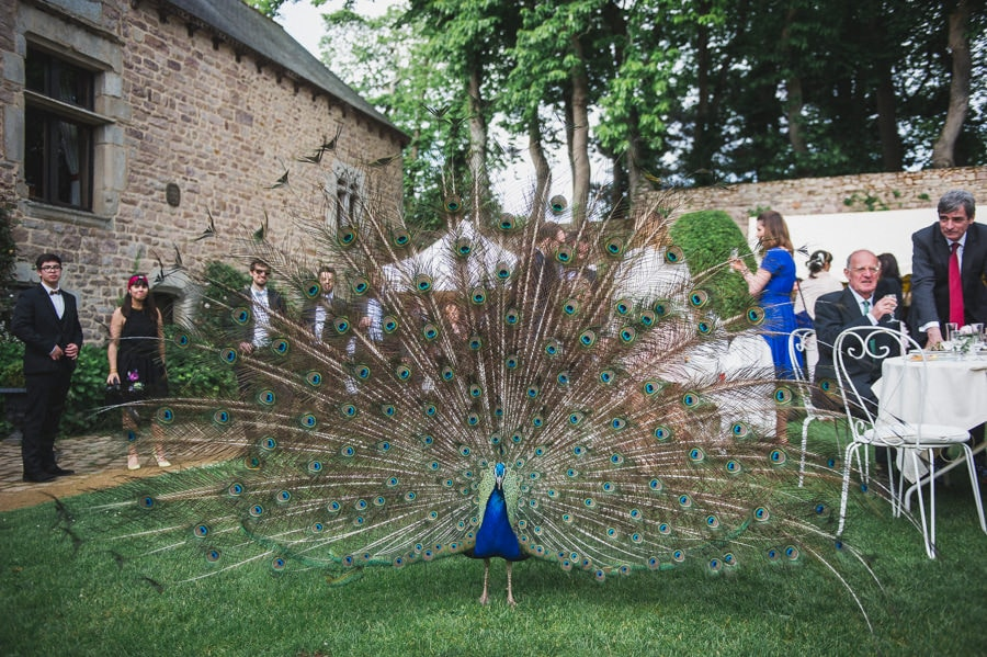 Mariage au manoir de la Noe Verte mariage-domaine-la-noe-verte-photographe-mariage-bretagne-67